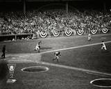 New York Yankees Photo Photo