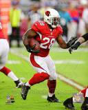 Arizona Cardinals - Rashard Mendenhall Photo Photo