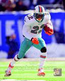 Miami Dolphins - Reggie Bush Photo Photo