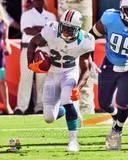 Miami Dolphins - Reggie Bush Photo Photo