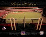 St Louis Cardinals Photo Photo