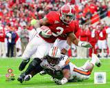 Alabama Crimson Tide - Trent Richardson Photo Photo