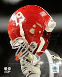 Alabama Crimson Tide Photo Photo