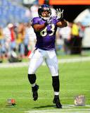Baltimore Ravens - Lee Evans Photo Photo