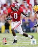 Alabama Crimson Tide - Julio Jones Photo Photo
