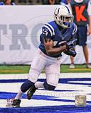 Indianapolis Colts - T.Y. Hilton Photo Photo