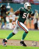 Miami Dolphins - Karlos Dansby Photo Photo