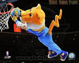 Denver Nuggets Photo Photo