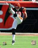 Cincinnati Bengals - Kevin Huber Photo Photo