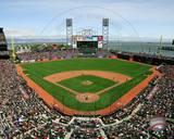 San Francisco Giants Photo Photo