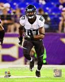 Jacksonville Jaguars - Kevin Elliott Photo Photo