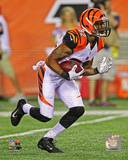 Cincinnati Bengals - Marvin Jones Photo Photo