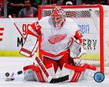 Detroit Red Wings - Joey MacDonald Photo Photo
