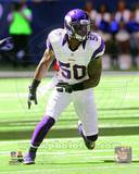 Minnesota Vikings - Erin Henderson Photo Photo