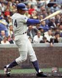 Chicago Cubs - Ernie Banks Photo Photo