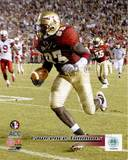 Florida State Seminoles  - Lawrence Timmons Photo Photo