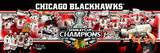 Chicago Blackhawks - Marian Hossa, Jonathan Toews, Patrick Kane, Patrick Sharp, Antti Niemi Panoram Photo