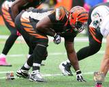 Cincinnati Bengals - Geno Atkins Photo Photo