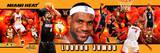 Miami Heat - LeBron James Panoramic Photo Photo