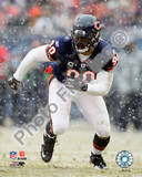 Chicago Bears - Julius Peppers Photo Photo