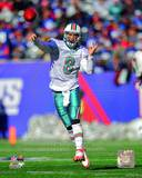 Miami Dolphins - Matt Moore Photo Photo