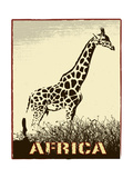 Africa Image With Giraffe Silhouette Posters by  Phase4Photography