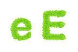English Alphabet Made From Green Leafs Posters by  sasilsolutions