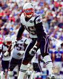 New England Patriots - Mark Anderson Photo Photo