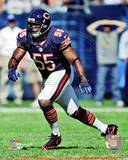 Chicago Bears - Lance Briggs Photo Photo