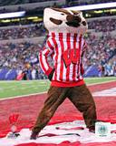 Wisconsin Badgers Photo Photo