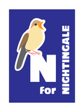N For The Nightingale, An Animal Alphabet For The Kids Art by Elizabeta Lexa