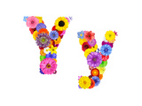 Flower Alphabet Isolated On White - Letter Y Prints by  tr3gi