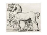 St. Mark Basilica Horses Old Illustration Print by  marzolino