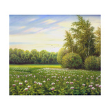 Beautiful Summer Landscape, Canvas, Oil Print by  balaikin2009