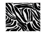 Zebra Animal Print For Backgrounds And Textures Prints by  chandanaroy