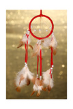 Beautiful Dream Catcher On Background With Lights Prints by  Yastremska