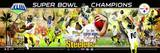 Pittsburgh Steelers Panoramic Photo Photo