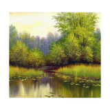 Beautiful Summer Landscape, Canvas, Oil Prints by  balaikin2009