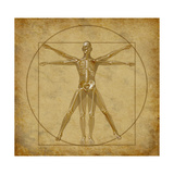 Vitruvian Human Diagram Grunge Medical Chart Affiche par  digitalista
