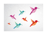 Colorful Humming Birds Illustration Premium Giclee Print by  cienpies