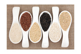 Rice Grain Selection In White Porcelain Scoops Over Hessian Background Poster by  marilyna