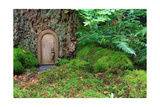 Little Wooden Fairy Tale Door In A Tree Trunk Prints by  Hannamariah