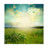 Green Meadow Under Blue Sky With Clouds Affiches par  Volokhatiuk