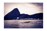 Sugar Loaf From A Boat At Baia De Guanabara In Rio De Janeiro Prints by  CelsoDiniz