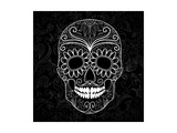 Day Of The Dead Black And White Skull Art by Alisa Foytik