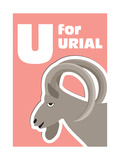 U For The Urial, An Animal Alphabet For The Kids Posters by Elizabeta Lexa