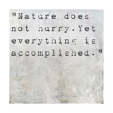 Inspirational Quote Lao Tzu By On Earthy Background Posters by  nagib