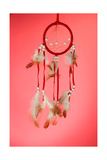 Beautiful Dream Catcher On Red Background Prints by  Yastremska