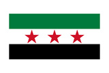 Syrian Interim Government And Syrian National Coalition'S National Flag Art by Bruce stanfield