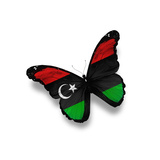 Libyan Flag Butterfly, Isolated On White Prints by  suns_luck